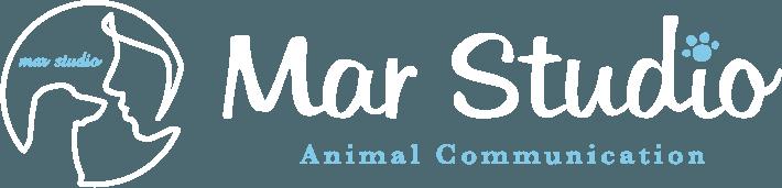 アニマルコミュニケーター、マールスタジオ - Mar Studio(マールスタジオ) | 動物と人のあいだに愛情の橋を架けるアニマルコミュニケーター