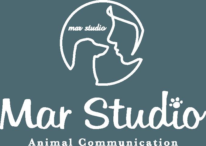marstudio-logo